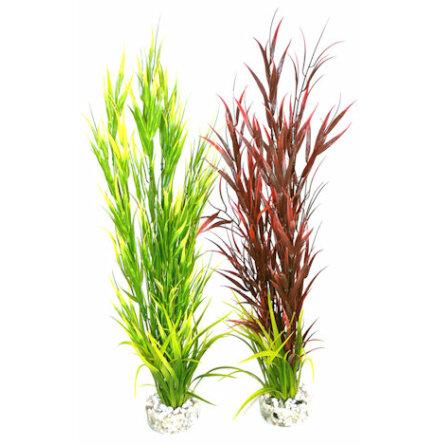Wild Mountain grön eller röd Sydeco