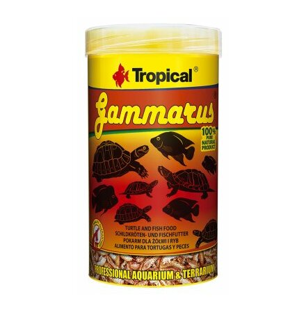Tropical Gammarus FD