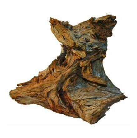 Mangroverot M 30-35 cm