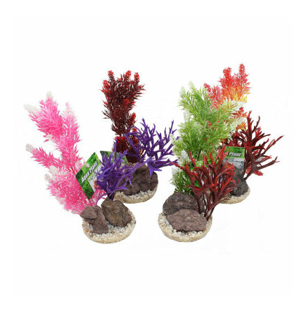 Aquaplant Rock large 28cm