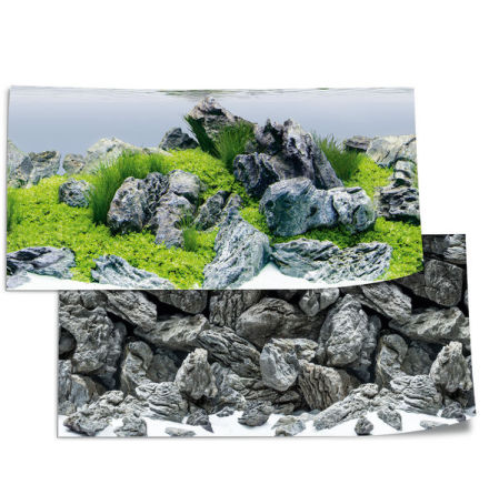 Bakgrund Poster 4 L 100x50 Aquascape/sten