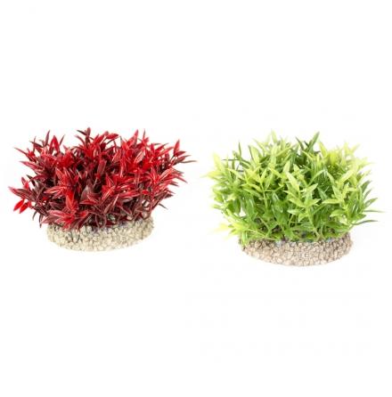 Miracle moss 8 cm bred 7,5 cm hög mix färger Aquadella