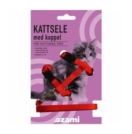 Kattungesele med koppel röd eller blå