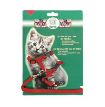 Kattungesele med koppel röd eller svart