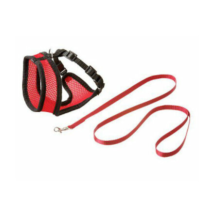 Kattungesele mesh med koppel röd/svart S & M