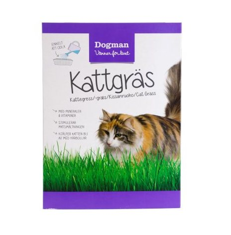 Kattgräs 100 g, Dogman