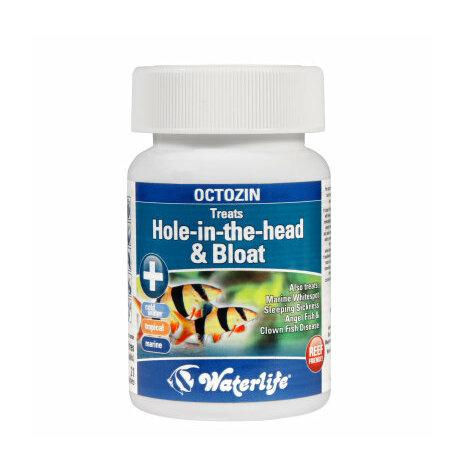 Octozin mot hål i huvudet & bukvattensot 21 tabletter