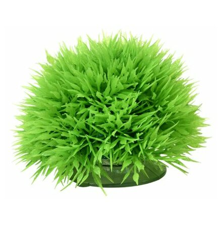 Plant Ball 6cm med sugkopp