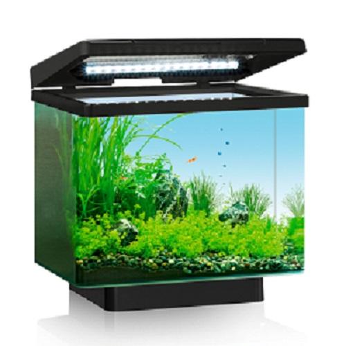 Köpa akvarium - Tips och råd vid köp online 9b6b00569b611